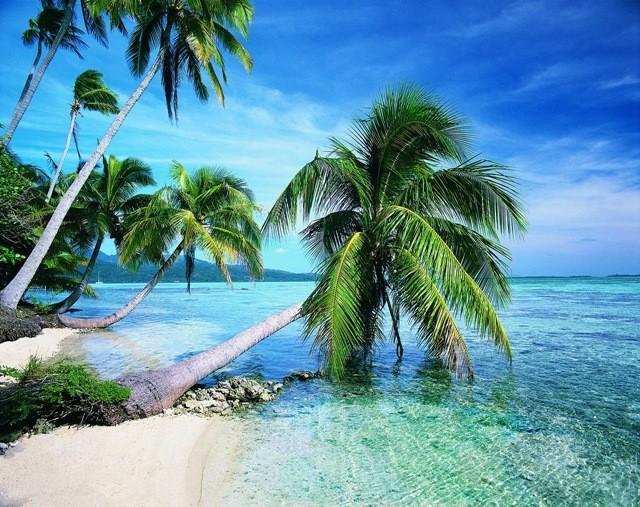 Zanzibar  Dream World Adventures