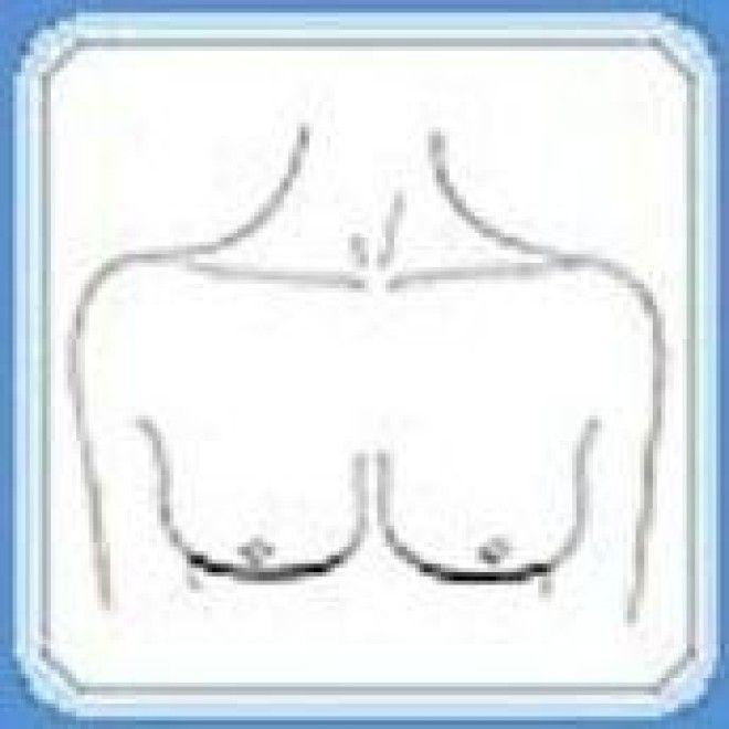 79Форма женской груди порно