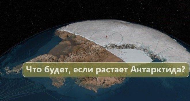 Что будет если растают ледники Антарктиды если растает Антарктида интересное ледники наука что если