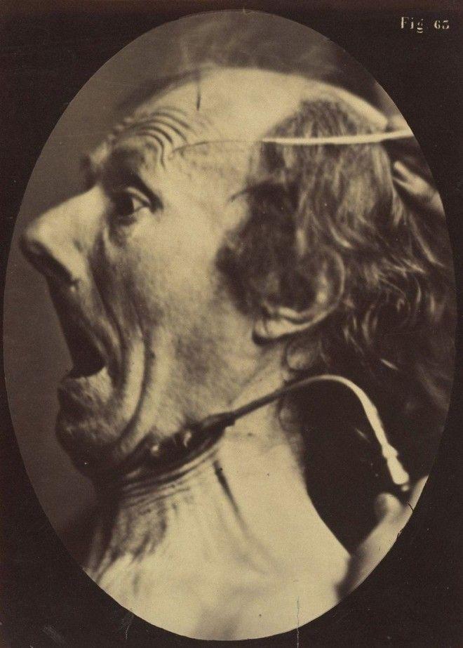 Выражение ужаса лицо наука эмоции