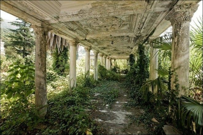 Природа против цивилизации