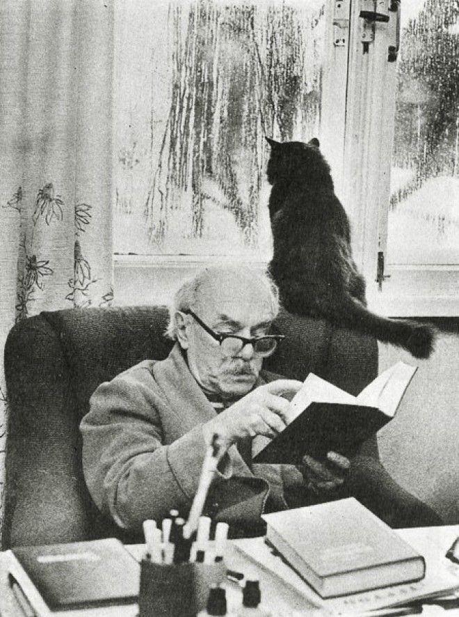 18 замечательных фотографий котиков у которых были свои писатели и поэты