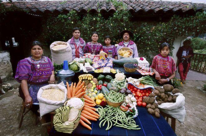 Содержимое холодильника семей разных стран