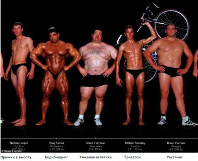 Lак выглядят тела олимпийских спортсменов в зависимости от вида спорта