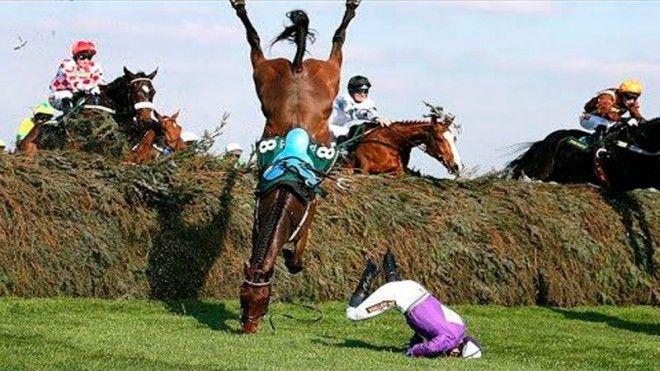 13 Жокеи и лошади тоже часто получают травмы знаменитости спорт спортсмены страшно фото