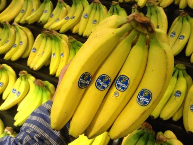 Что из продуктов скоро может навсегда исчезнуть