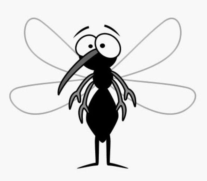 Картинки по запросу маска комара