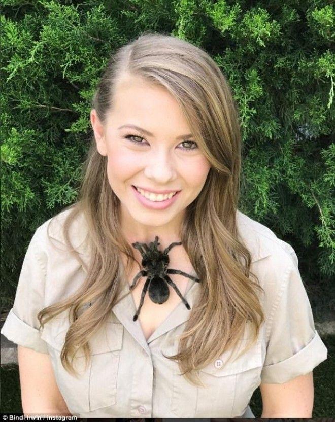 Бесстрашная красавица Бинди Ирвин Бинди Ирвин девушка зоопарк тарантул