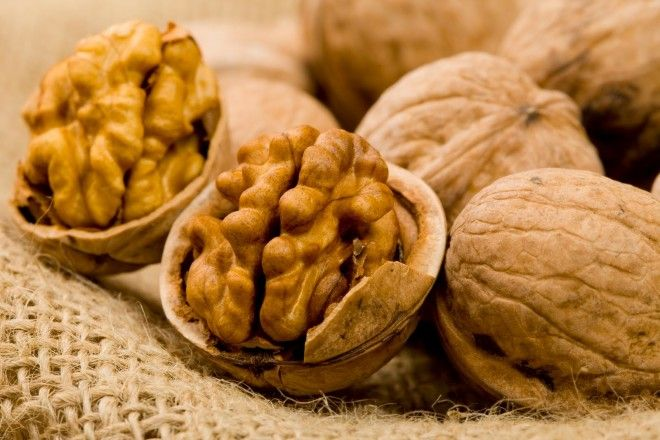 Картинки по запросу грецкий орех