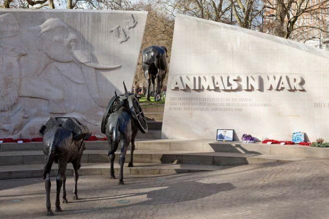 Памятник в память о Британском холокосте животных