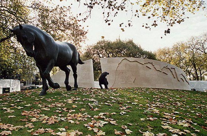 В годы Второй мировой войны в Англии усыпили более 750 тысяч животных