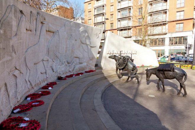 Памятник посвящен всем животным в разные годы погибшим изза воен