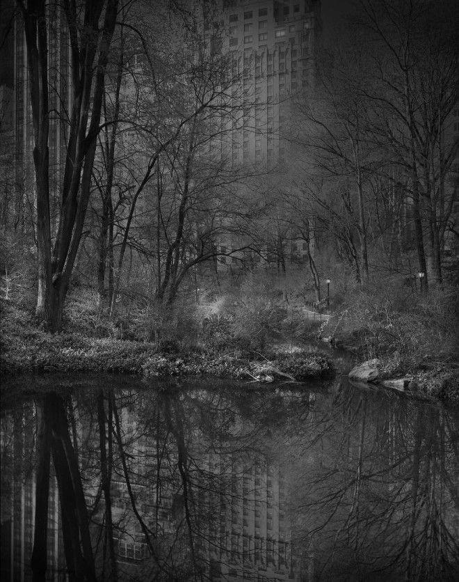 «В глубоком сне»: Центральный парк в фотографиях Майкл Массайа 10