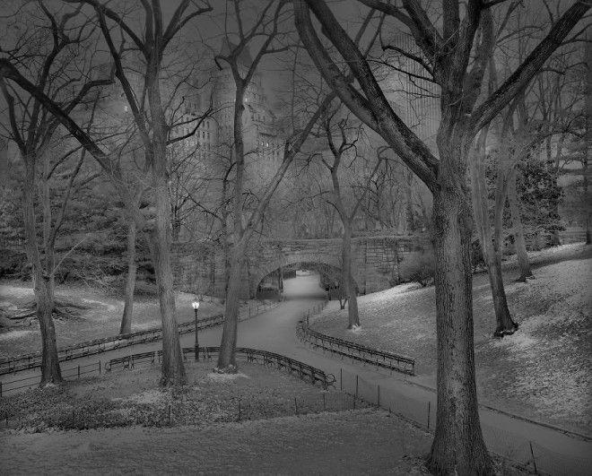 «В глубоком сне»: Центральный парк в фотографиях Майкл Массайа 15