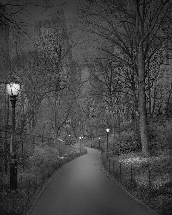 «В глубоком сне»: Центральный парк в фотографиях Майкл Массайа 16