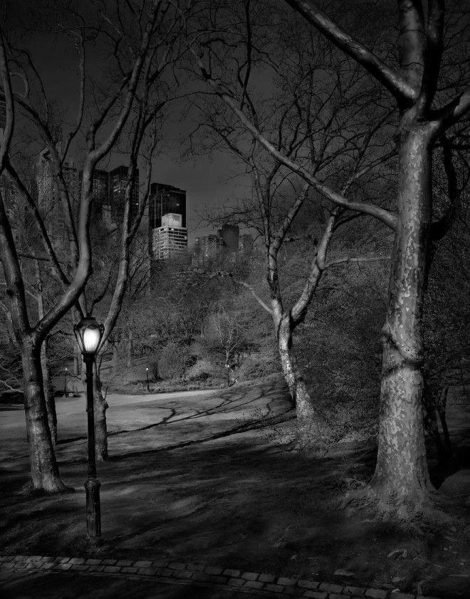 «В глубоком сне»: Центральный парк в фотографиях Майкл Массайа 17