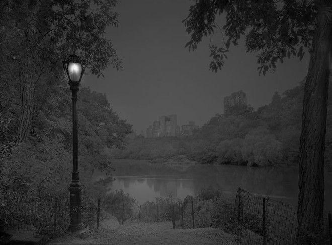 «В глубоком сне»: Центральный парк в фотографиях Майкл Массайа 18