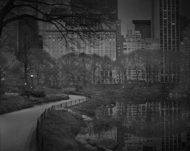 «В глубоком сне»: Центральный парк в фотографиях Майкл Массайа 19