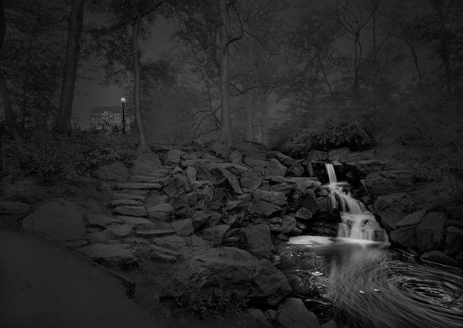 «В глубоком сне»: Центральный парк в фотографиях Майкл Массайа 20