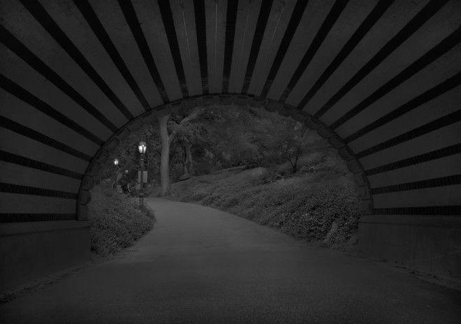 «В глубоком сне»: Центральный парк в фотографиях Майкл Массайа 21