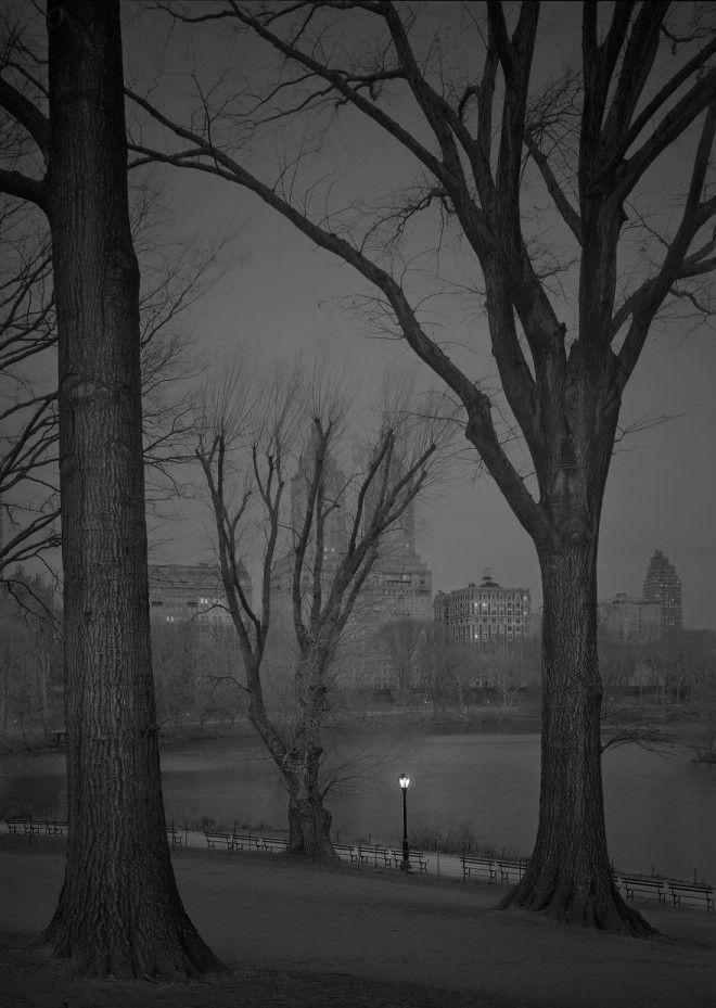 «В глубоком сне»: Центральный парк в фотографиях Майкл Массайа 22