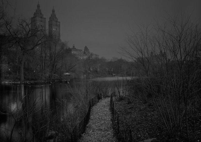 «В глубоком сне»: Центральный парк в фотографиях Майкл Массайа 25