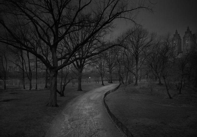 «В глубоком сне»: Центральный парк в фотографиях Майкл Массайа 27