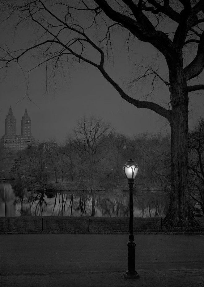 «В глубоком сне»: Центральный парк в фотографиях Майкл Массайа 28