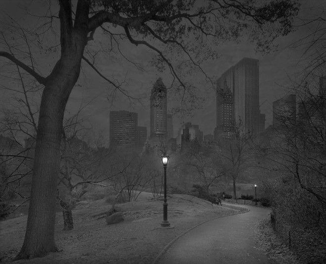 «В глубоком сне»: Центральный парк в фотографиях Майкл Массайа 33