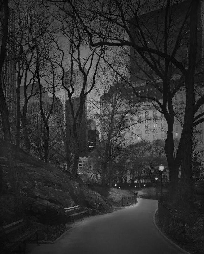 «В глубоком сне»: Центральный парк в фотографиях Майкл Массайа 36