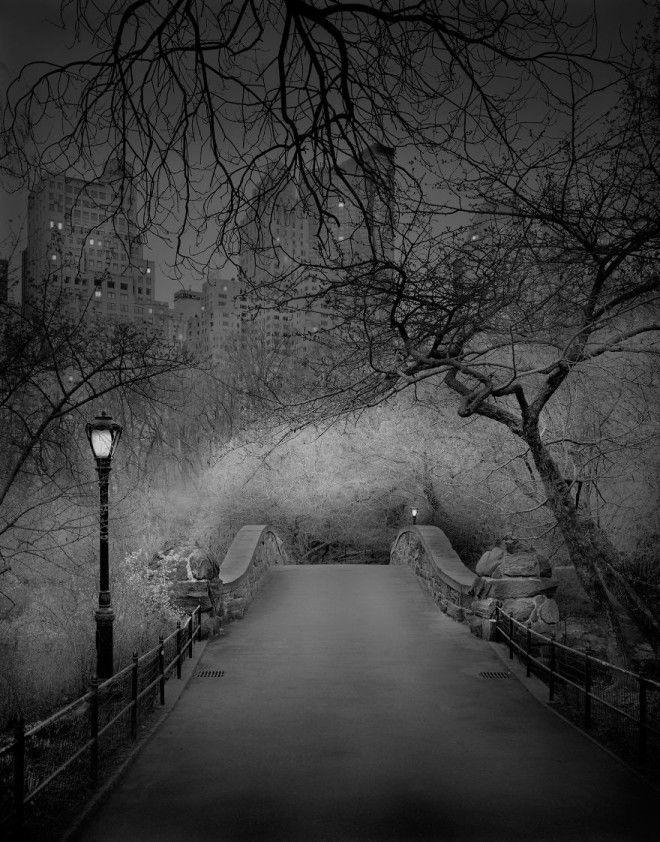 «В глубоком сне»: Центральный парк в фотографиях Майкл Массайа 3