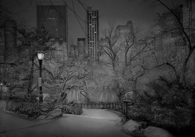 «В глубоком сне»: Центральный парк в фотографиях Майкл Массайа 4