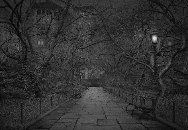 «В глубоком сне»: Центральный парк в фотографиях Майкл Массайа 7