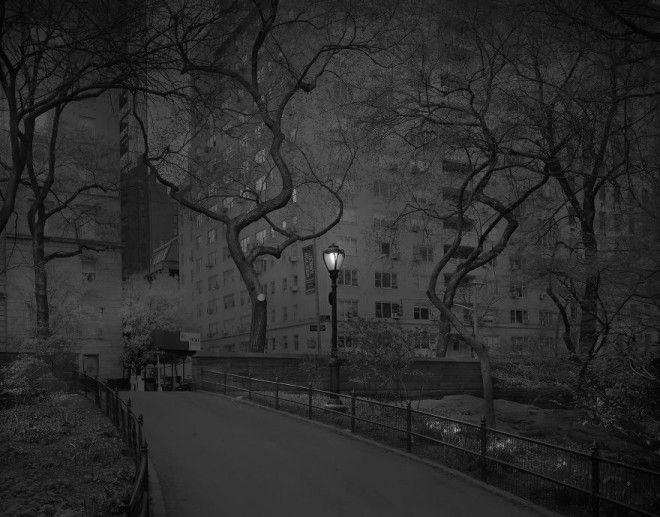 «В глубоком сне»: Центральный парк в фотографиях Майкл Массайа 8