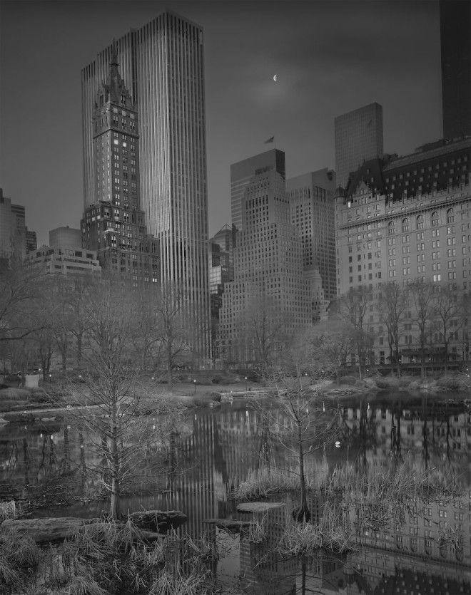 «В глубоком сне»: Центральный парк в фотографиях Майкл Массайа 9