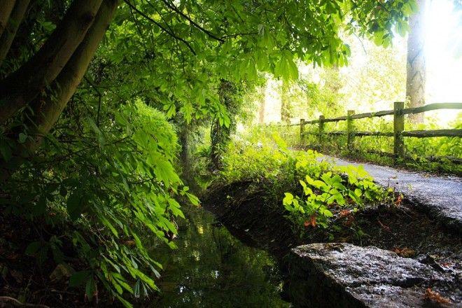 Байбери – самая красивая деревня в Англии 7