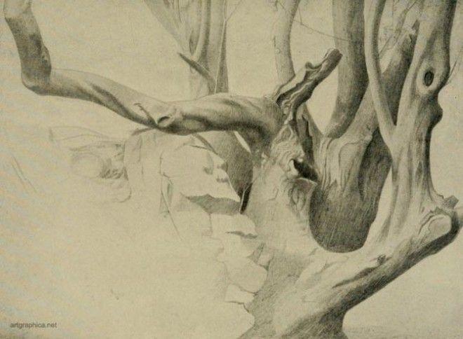 Картинки по запросу Unconscious drawing trees