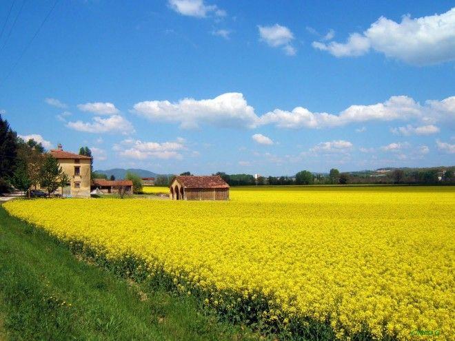 tuscany04