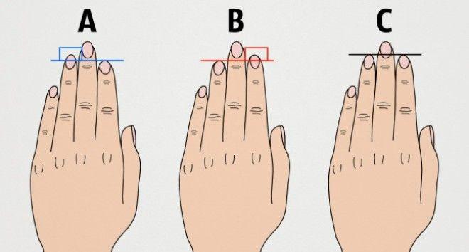 SВот что длина пальцев руки говорит о вашем характере