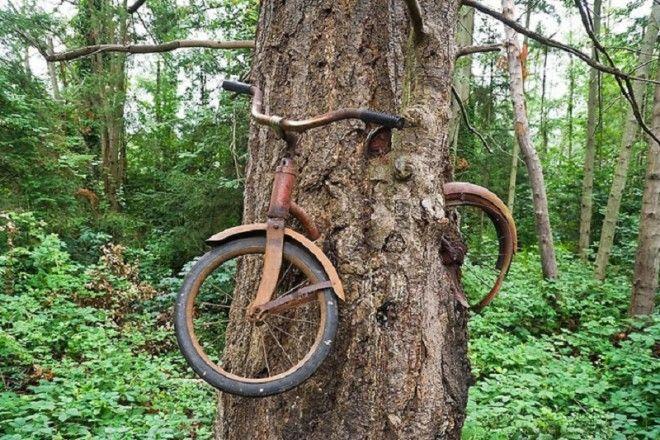 SТы миллион раз видел данное фото но не знал как этот велосипед сюда попал