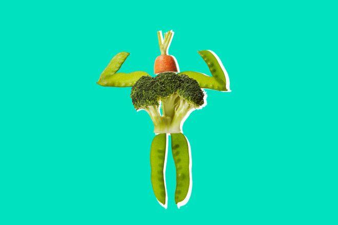 Картинки по запросу vegetarian sleep dont