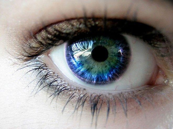 Жизнь на экране влияние гаджетов на зрение