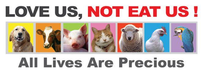 Картинки по запросу vegetarian dont eat us