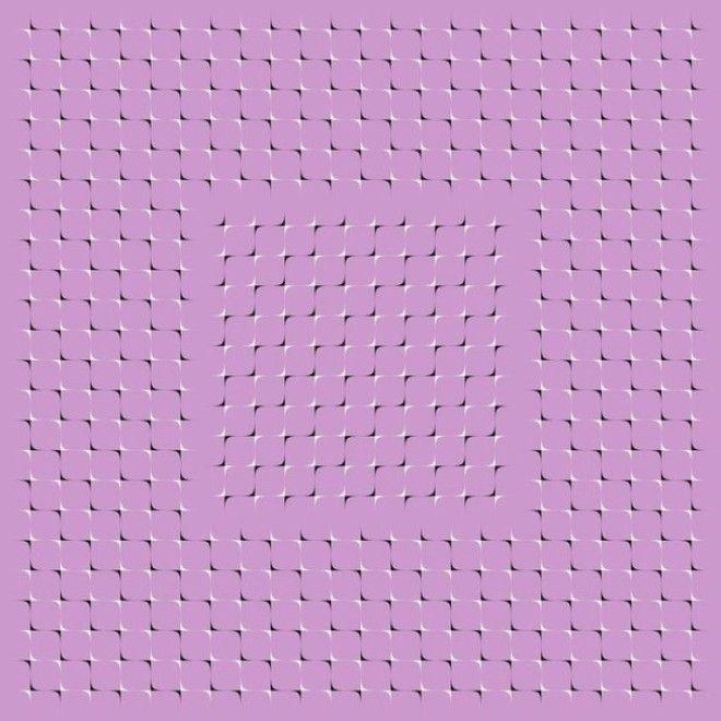 S10 оптических иллюзий которые заставят вас усомниться в зрении