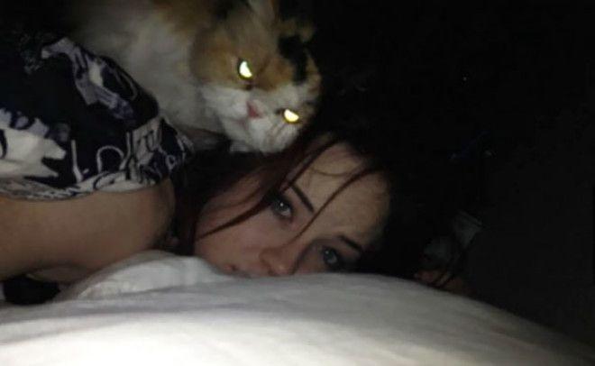 My Cat Is Plotting To Kill Me