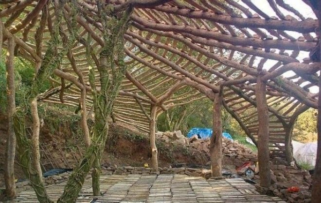 Мужчина создал жилье используя обломки и кору дерева Получилось гениально
