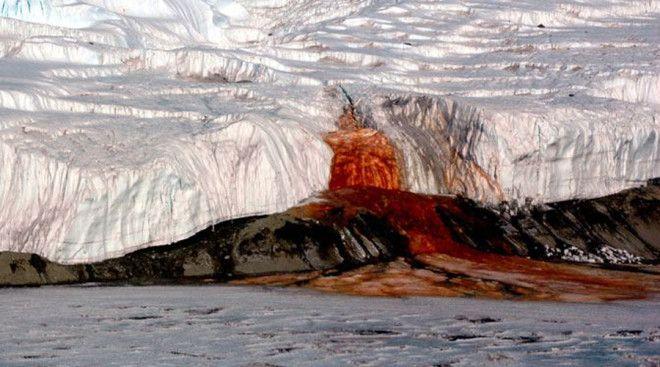 Шокирующие находки ученых в Антарктиде