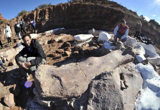 В Патагонии найдены останки самого большого динозавра в истории