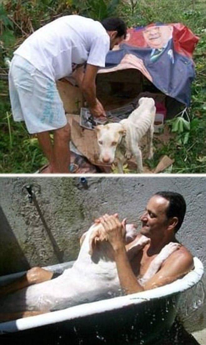 LB11 трогательных фотографий спасения животных которые попали в беду