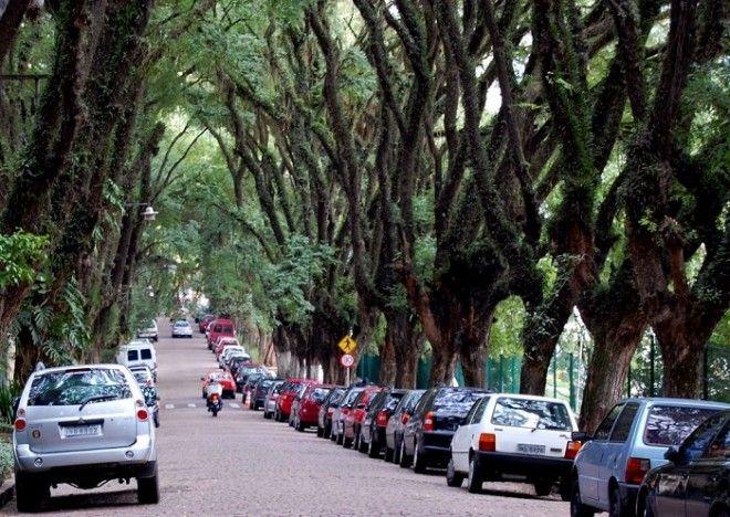 Одна из самых красивых улиц мира